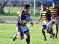 final-reserva-2011-lobos-vs-la-olla-87