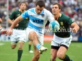 Pumas vs Springboks