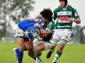 rugby-semifinal-2011-occ-vs-trebol-124