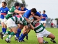 rugby-semifinal-2011-occ-vs-trebol-138
