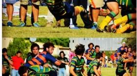 Fotos instagram ceibos